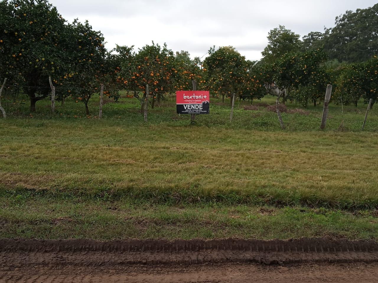 Puerto Yeruá - VENTA